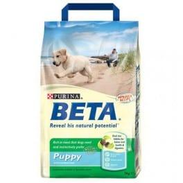 beta-puppy-with-chicken–rice